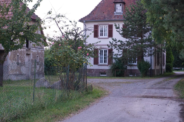 Haus in Seltz