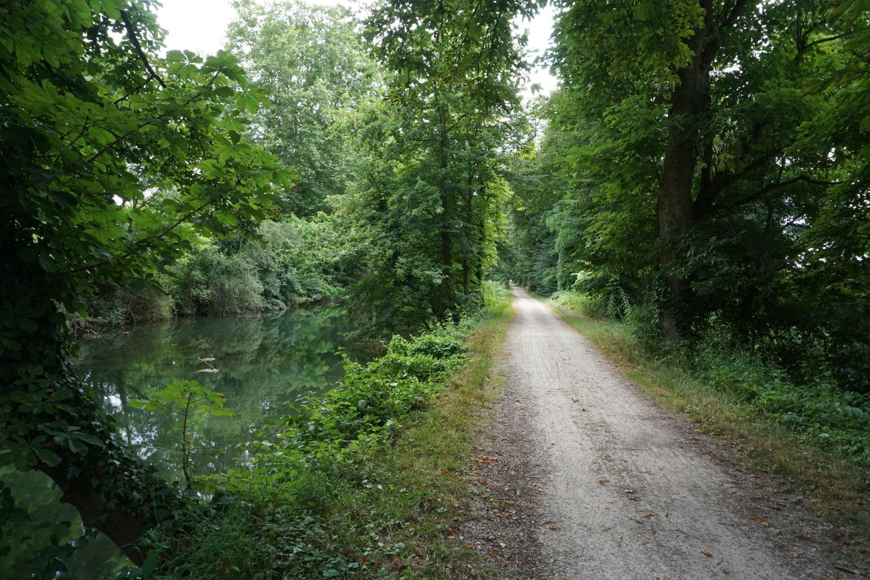 Schöne Waldwege am Kanal