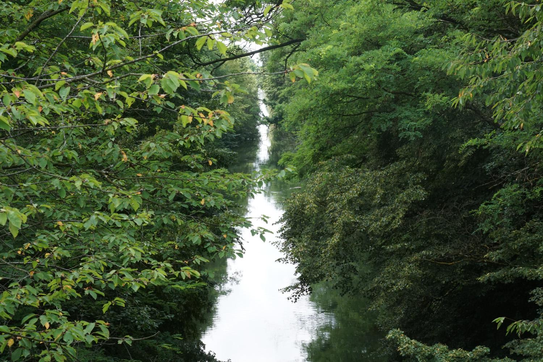Auch vom Kanal war hier nicht mehr viel zu sehen