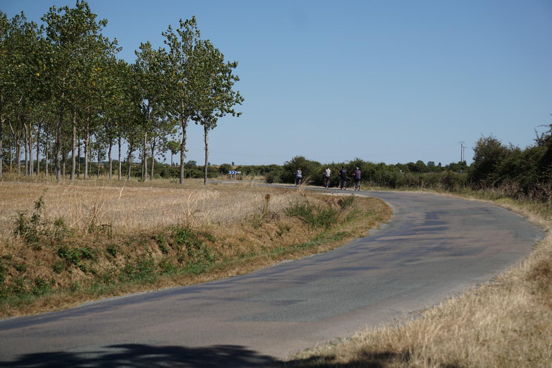 Radweg mit wenig Schatten