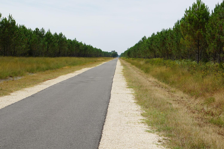 Komoot: Folge dem Weg 22500 m