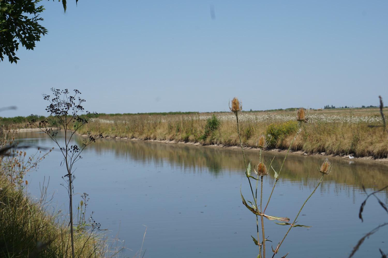 kleine Pause am Kanal unter einem der wenigen Bäume