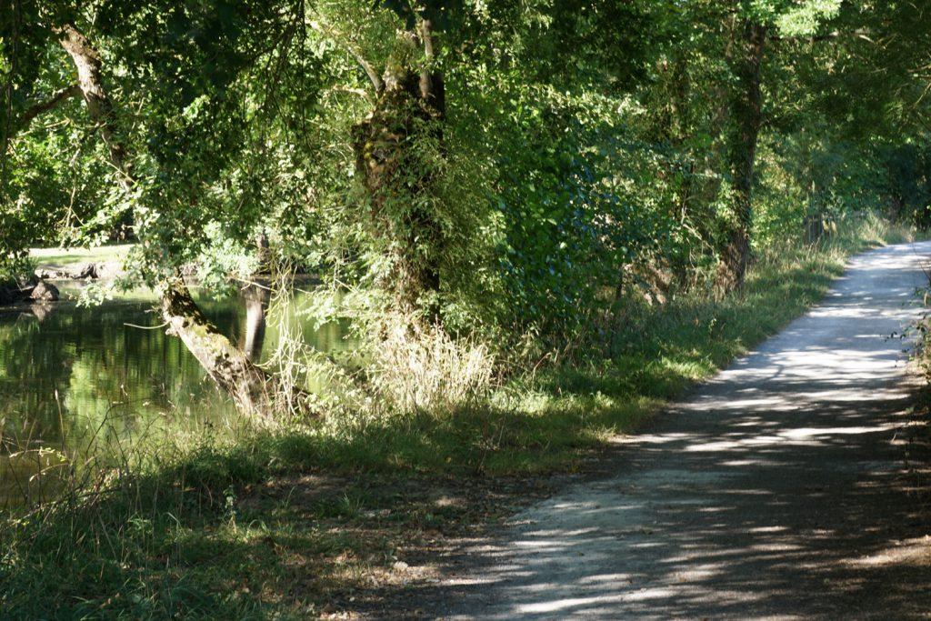 Schöner Radweg am Fluss