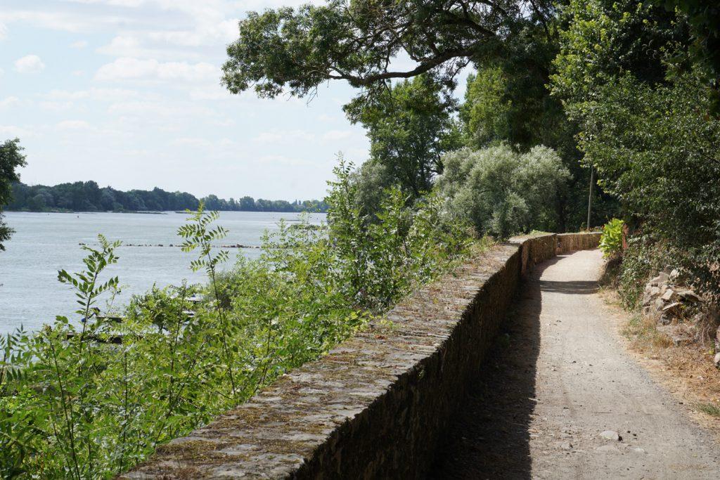 Küstenradweg am Fluß
