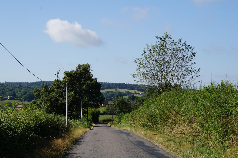 Hügeliges Burgund, ständig bergauf und bergab.