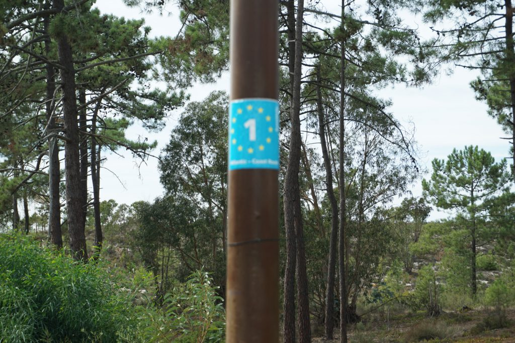 mal wieder ein Schild: Eurovelo 1 Coastal Route