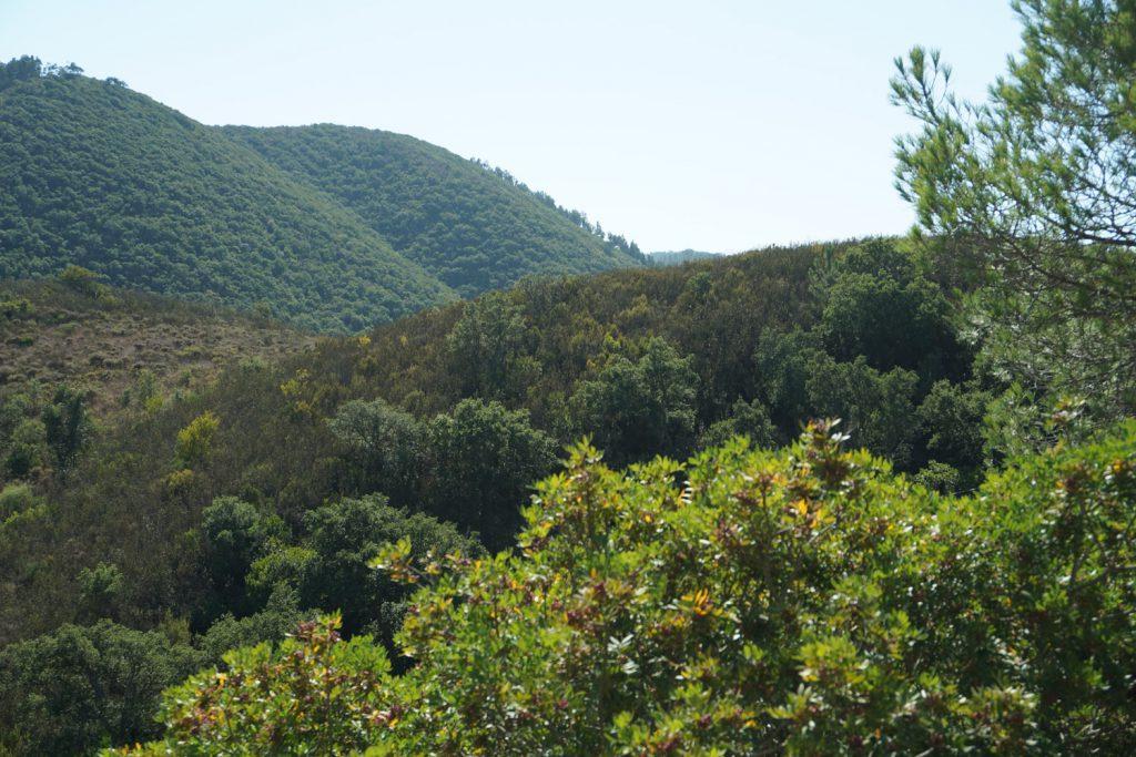 Tolle bergige Landschaft