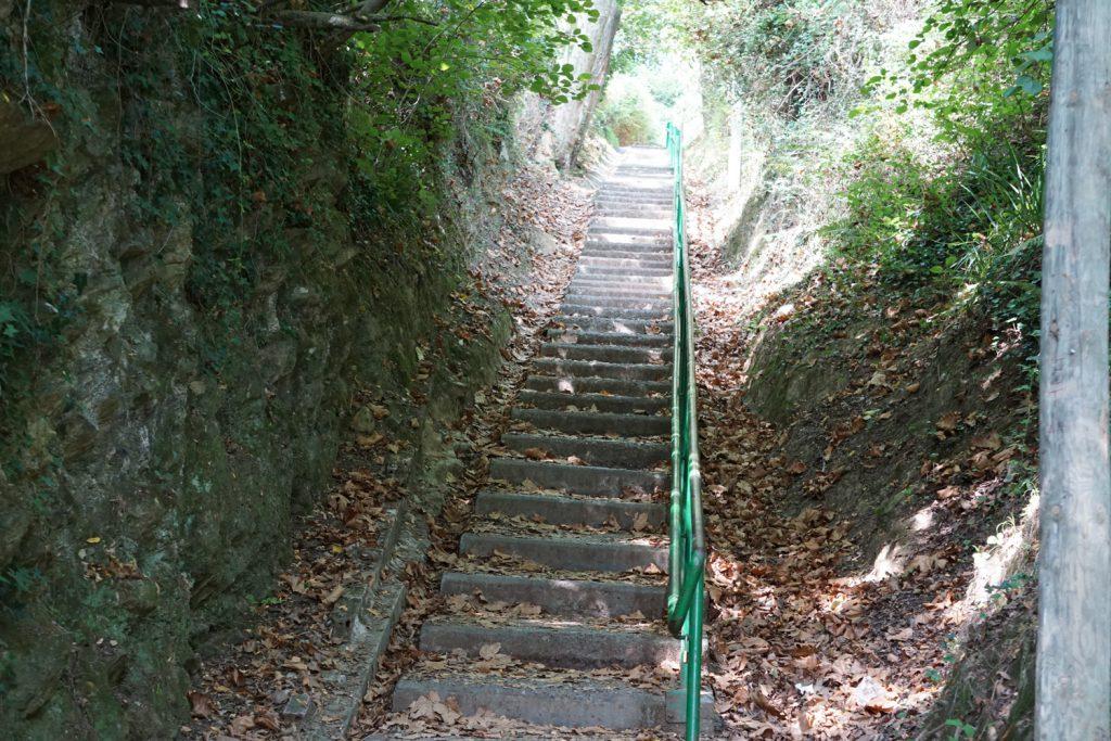 Folge diesem Weg 2500 m.