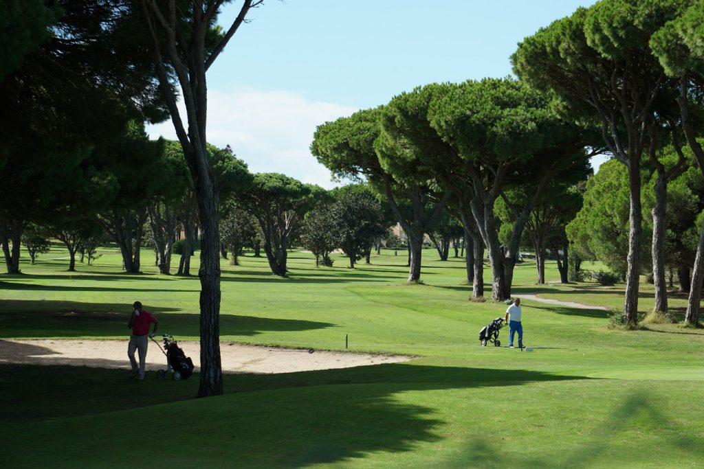 Sattes Grün der Golfplätze