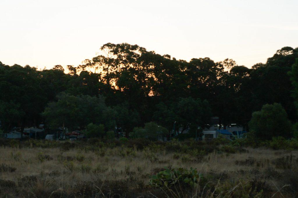 Blick auf den lauschigen Campingplatz