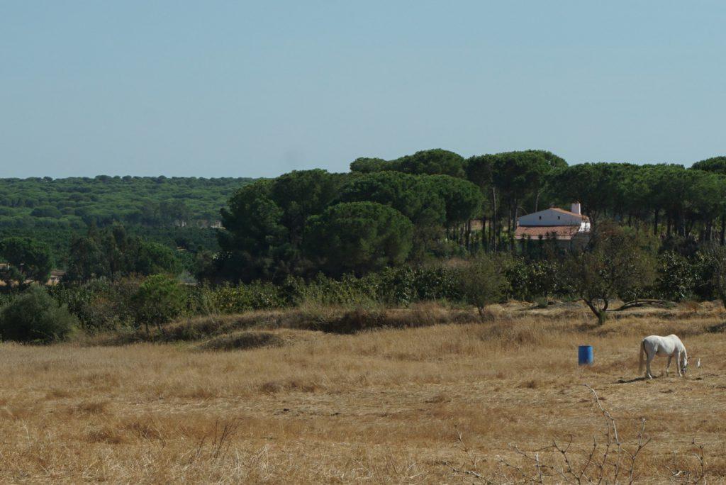 ländliches Andalusien