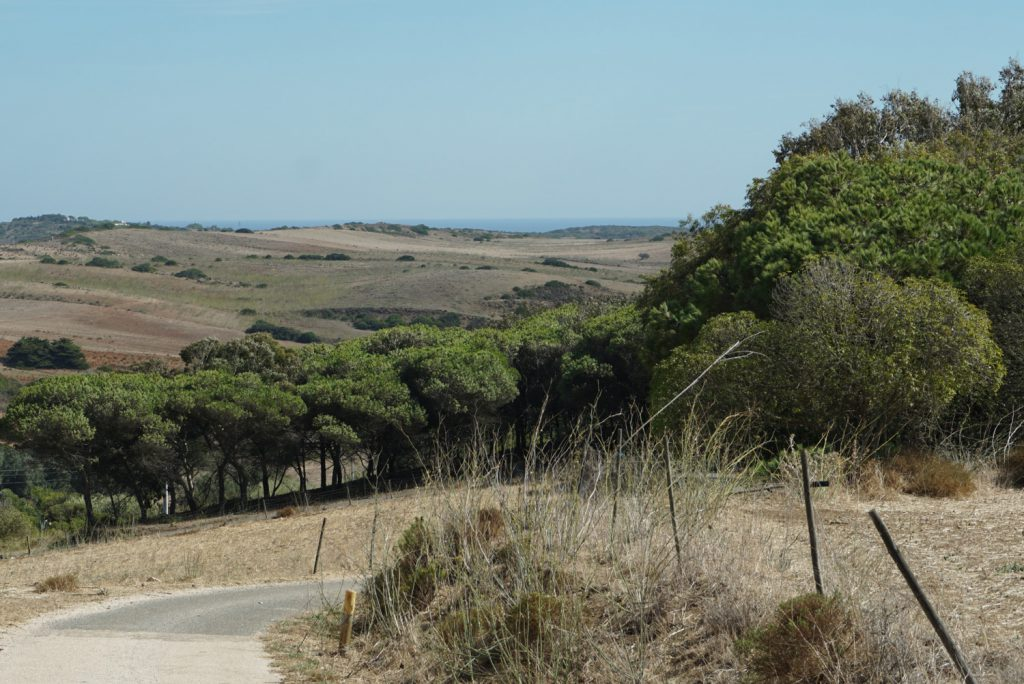 Radweg durch herrliche Landschaft