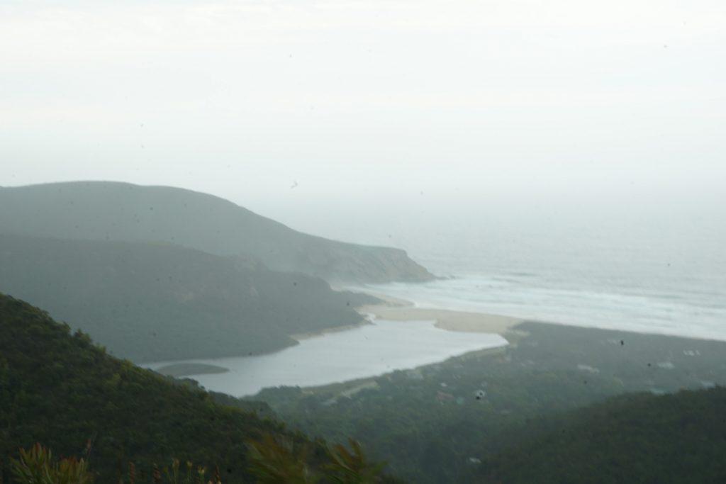 Blick vom Wald auf die Lagune