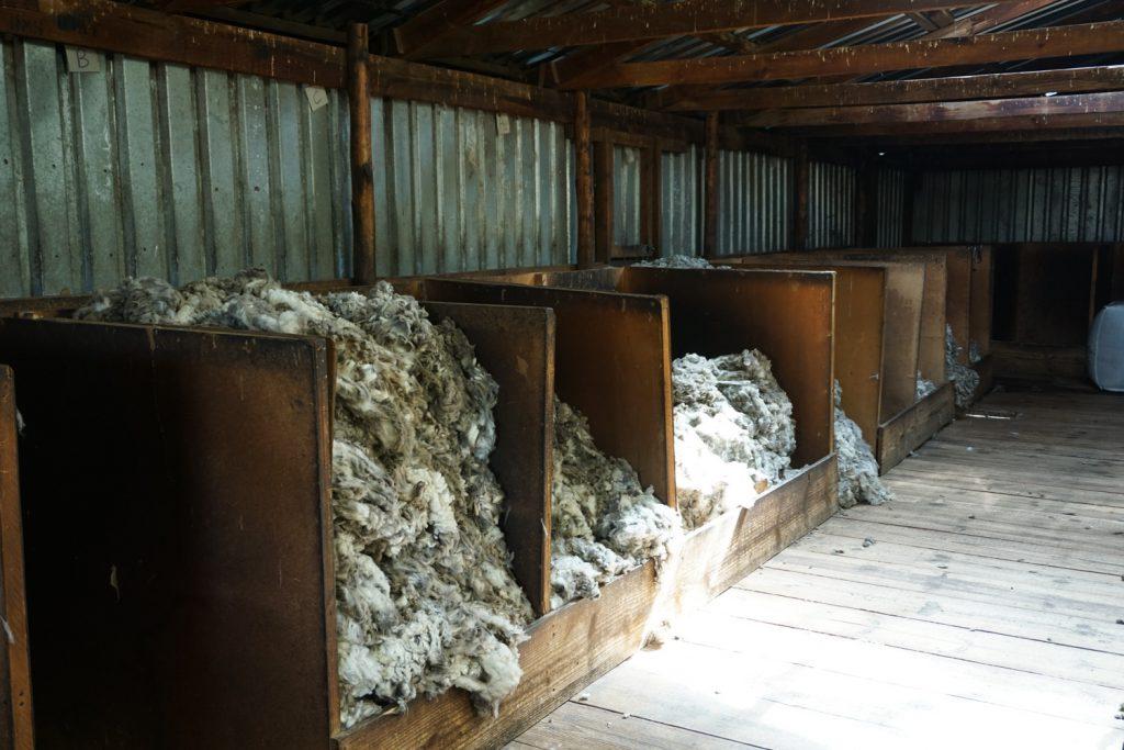 Wollsortierung