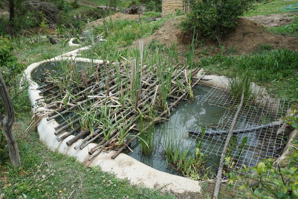 Brauchwasserbehandlung