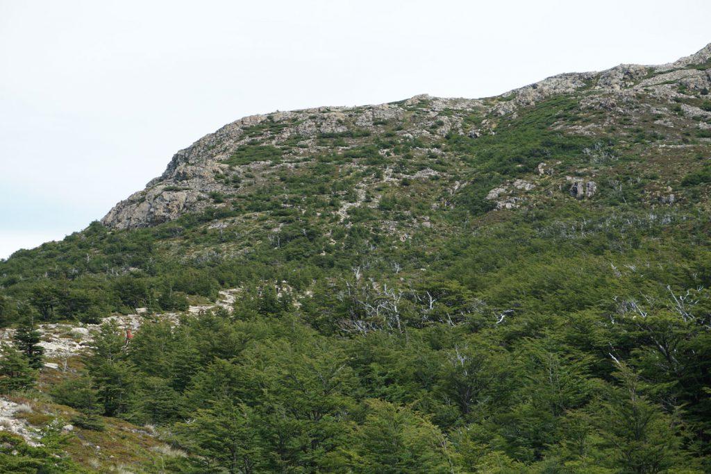 Die letzen 400 m, die es sehr steil bergauf ging